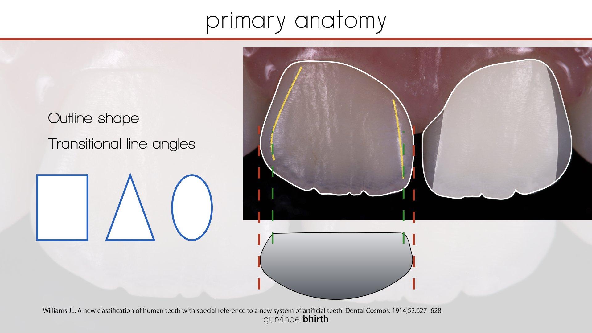 Anterior Composite Dentistry Course